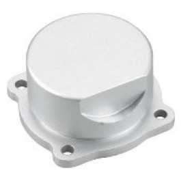 COVER PLATE MAX-55HZ OS Engines Parts